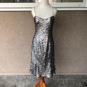 Banana Republic Sliver Sequin Dress
